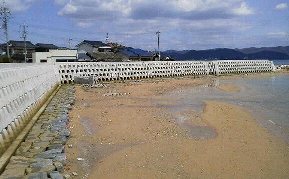 泊海岸 高潮対策